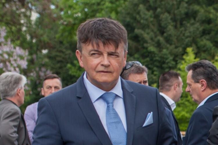 Robert Gotić