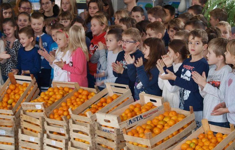 škola mandarine