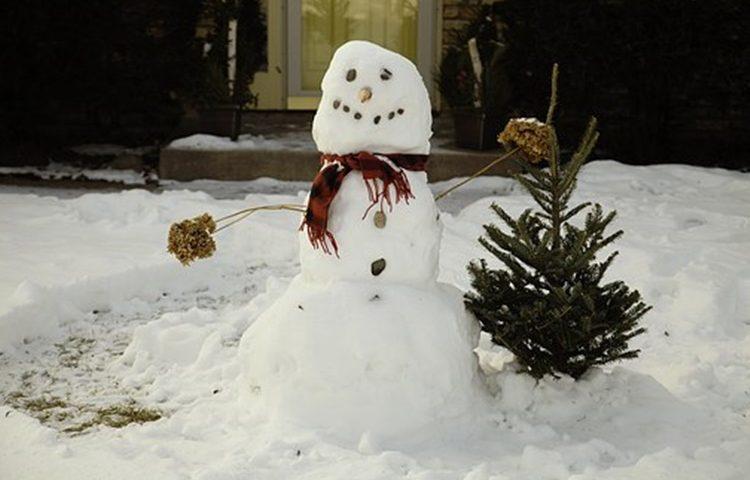 snjegovic zima snijeg