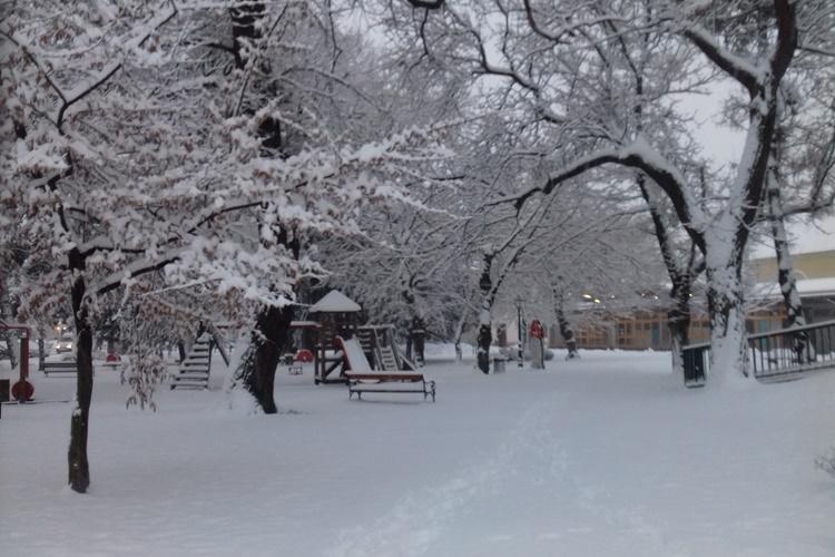 snijeg 7