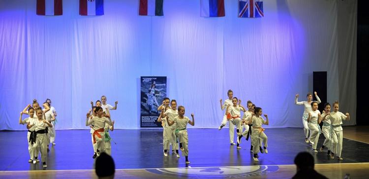 plesaci ludberg 7