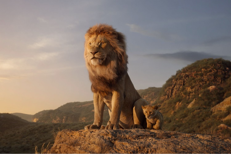 Kralj lavova 1
