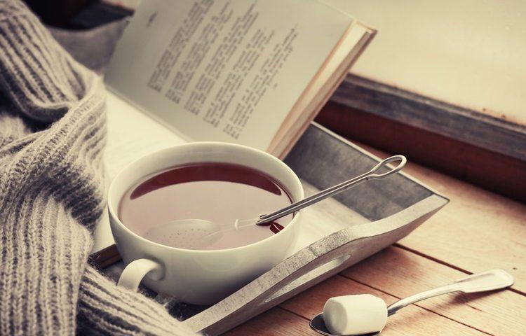 Tea-Jumper-and-Book-Cosy-