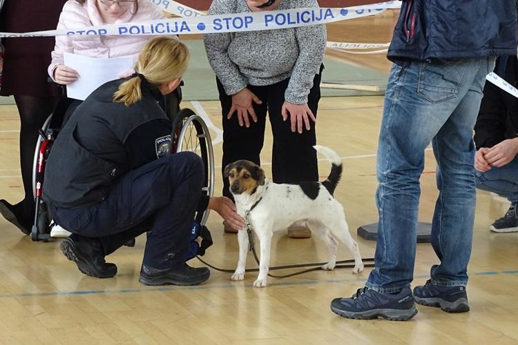 policija (11)