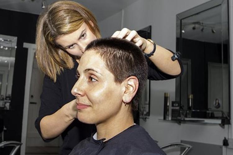 frizer 3