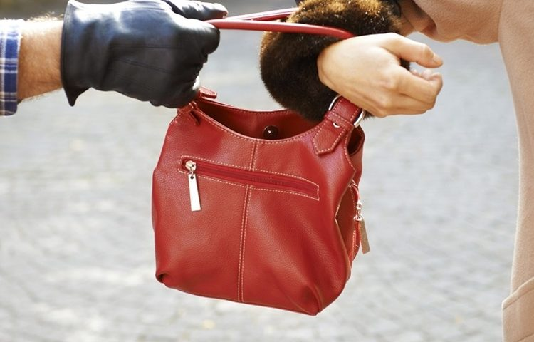 policija lopov torba