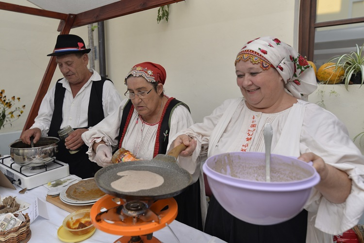 Bucograd_dan_8_4