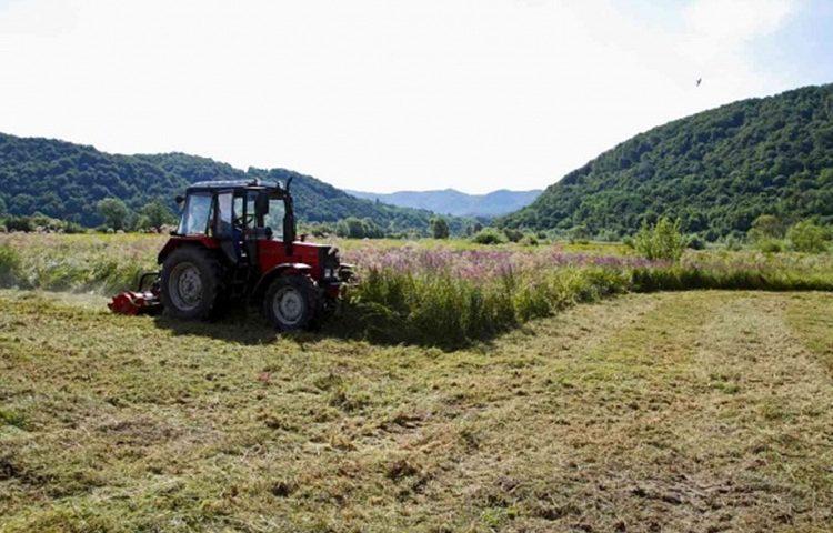 traktor polje