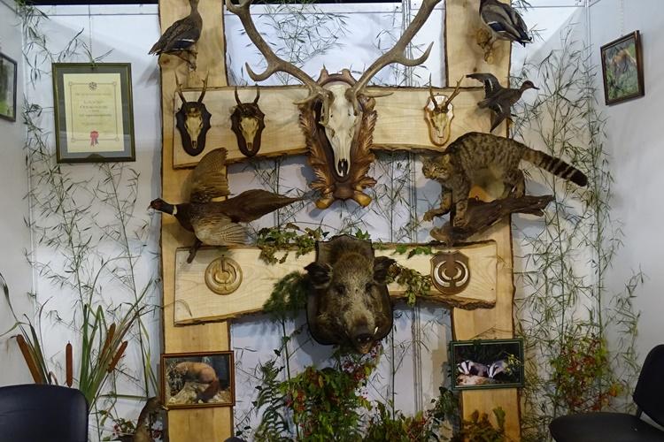 sajam lov priroda009
