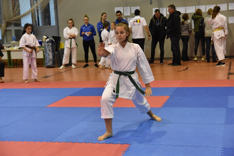 karate aik (4)
