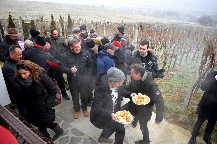 vincekovo vinica002
