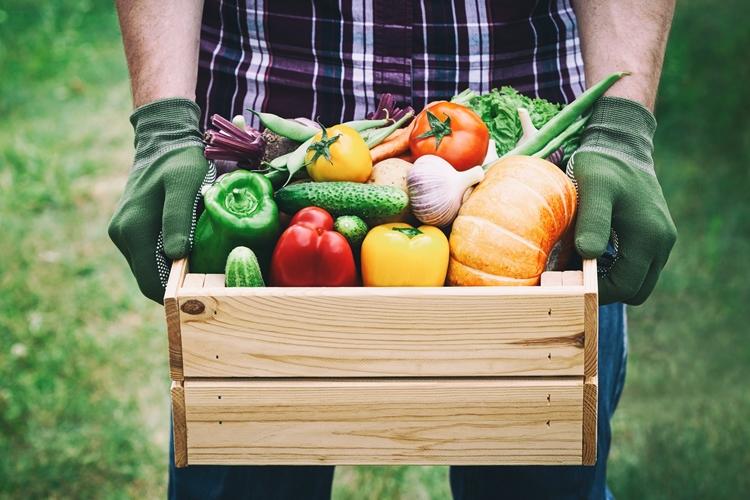 voće povrće
