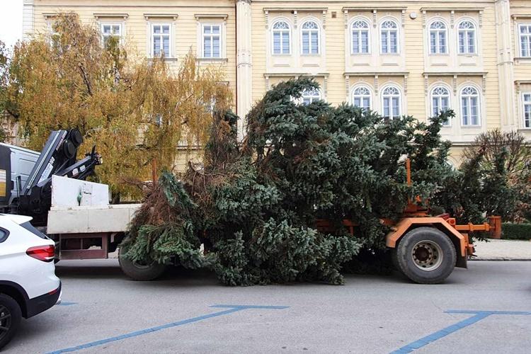 bozicno drvce varazdin (1)
