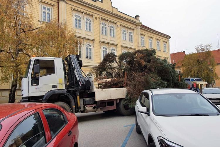 bozicno drvce varazdin (2)