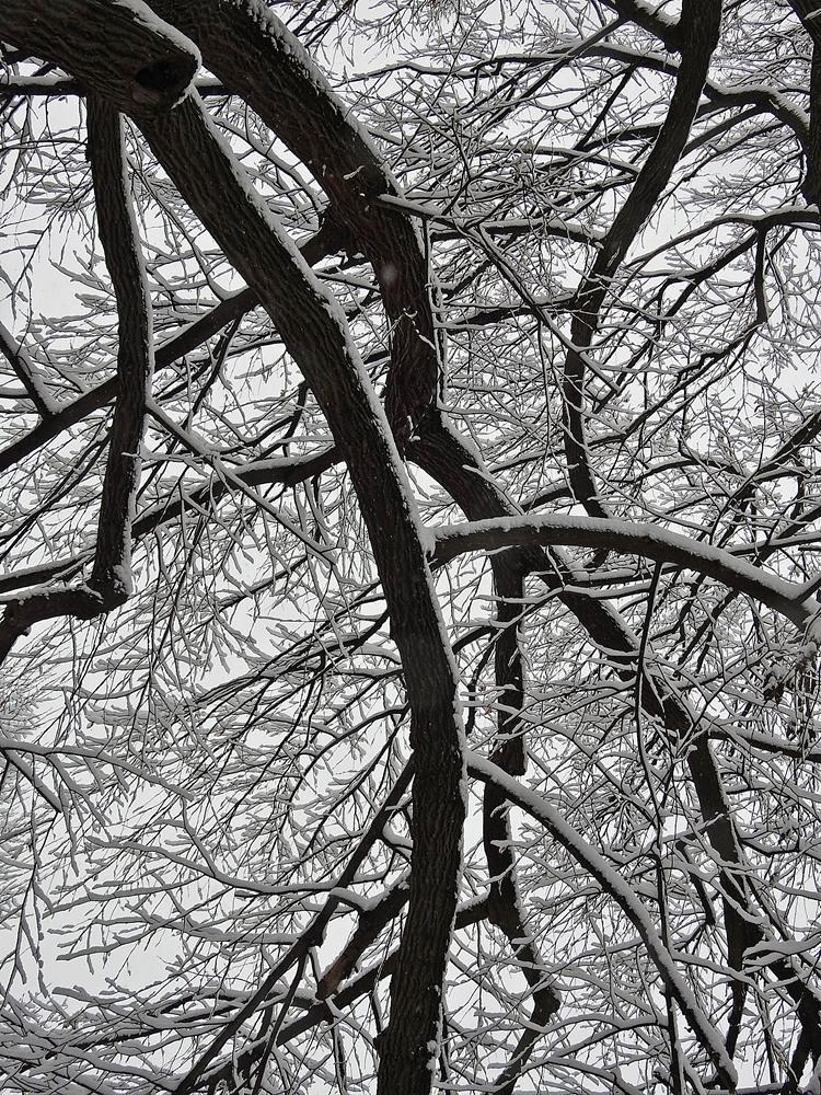 varazdin zima 24