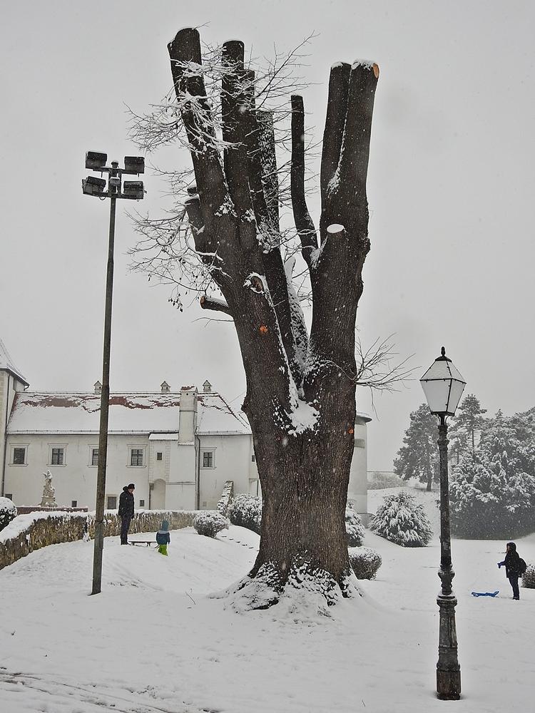varazdin zima 41