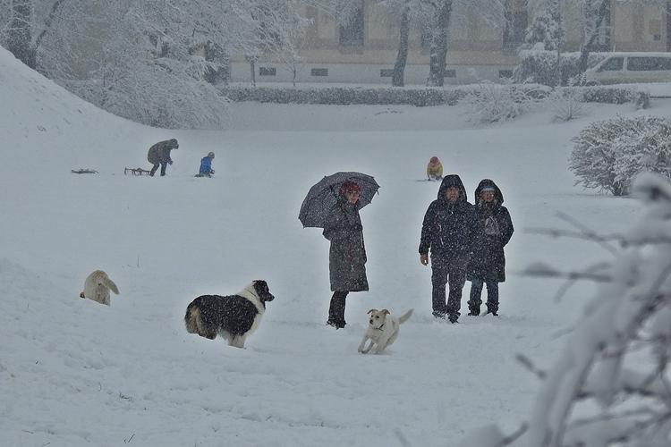 varazdin zima 47