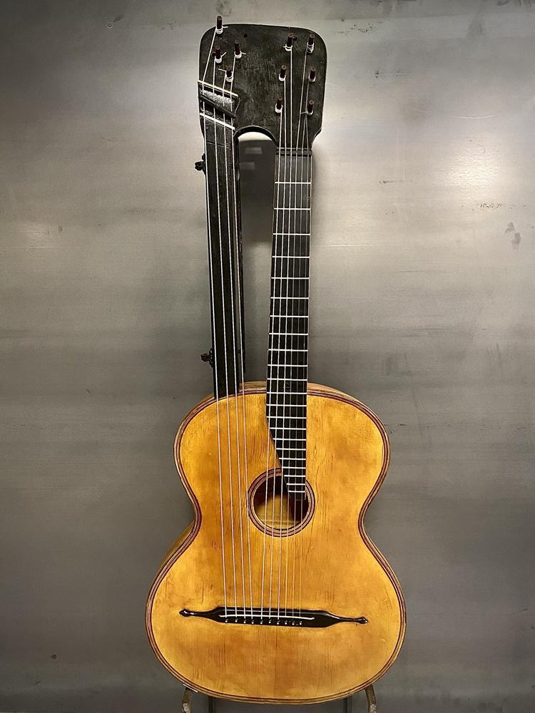 dvovrata gitara 1